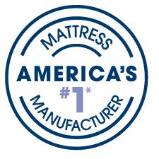 americas no.1 logo